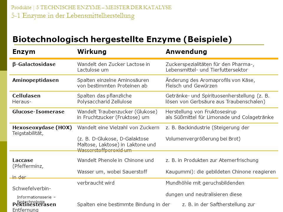 Biotechnologisch hergestellte Enzyme (Beispiele)
