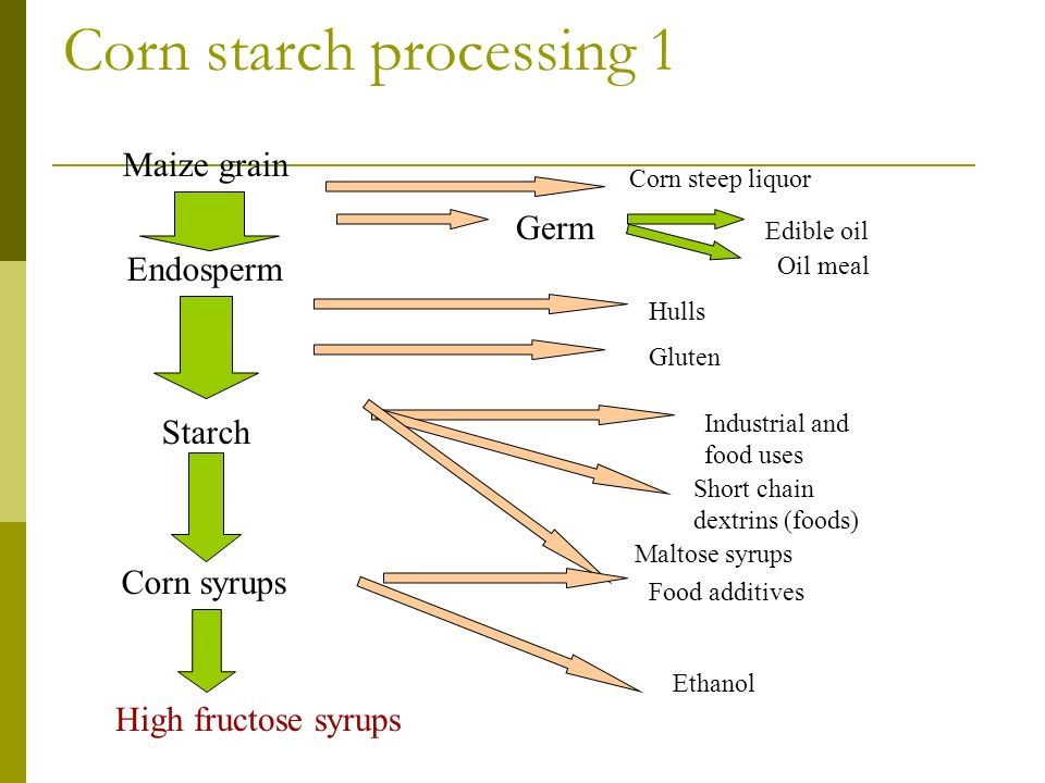 Corn starch processing 1