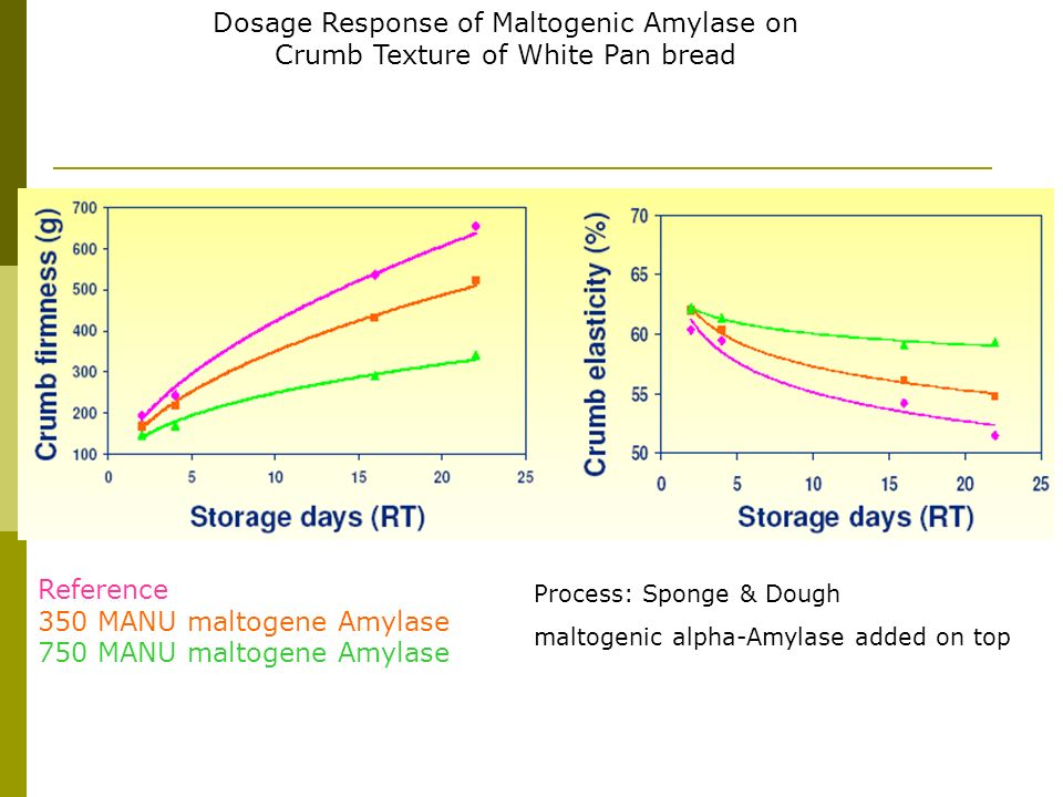 Reference 350 MANU maltogene Amylase 750 MANU maltogene Amylase
