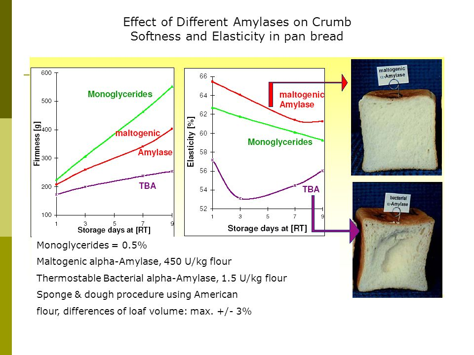 Effect of Different Amylases on Crumb Softness and Elasticity in pan bread