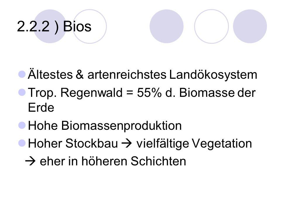 2.2.2 ) Bios Ältestes & artenreichstes Landökosystem