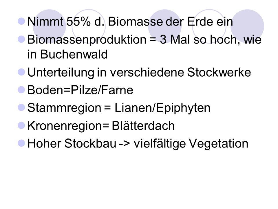 Nimmt 55% d. Biomasse der Erde ein