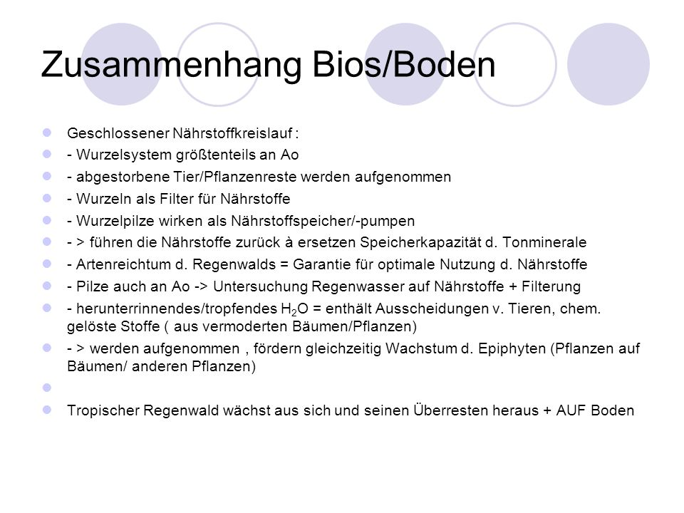 Zusammenhang Bios/Boden