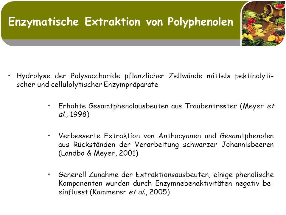 Enzymatische Extraktion von Polyphenolen