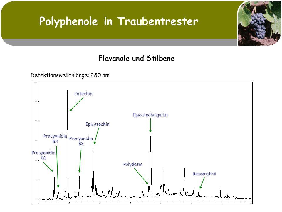 Polyphenole in Traubentrester Flavanole und Stilbene