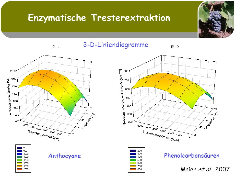 Enzymatische Tresterextraktion