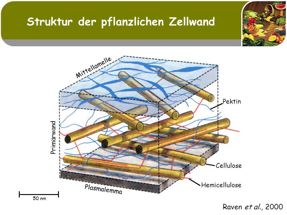 Struktur der pflanzlichen Zellwand