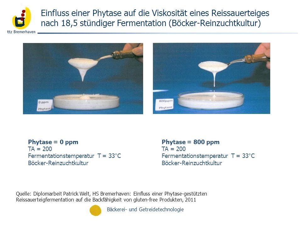 Einfluss einer Phytase auf die Viskosität eines Reissauerteiges nach 18,5 stündiger Fermentation (Böcker-Reinzuchtkultur)