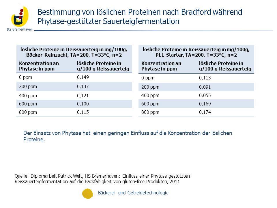 Bestimmung von löslichen Proteinen nach Bradford während Phytase-gestützter Sauerteigfermentation