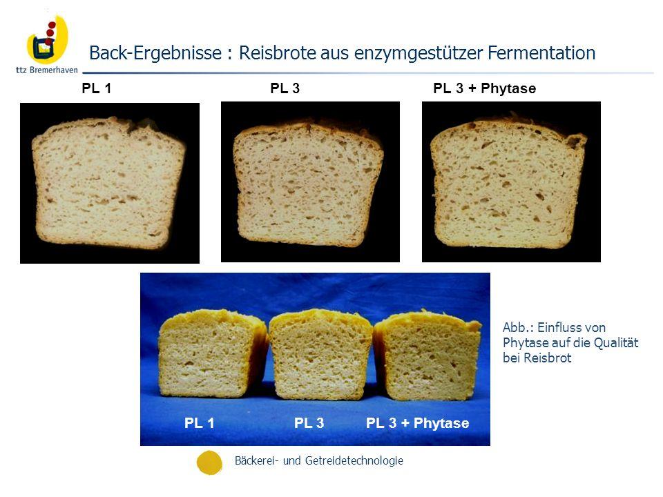Back-Ergebnisse : Reisbrote aus enzymgestützer Fermentation