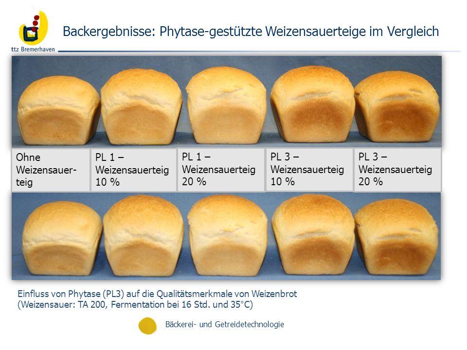 Backergebnisse: Phytase-gestützte Weizensauerteige im Vergleich