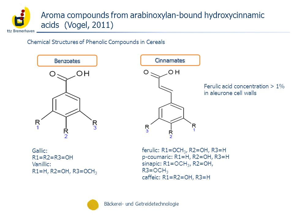 Aroma compounds from arabinoxylan-bound hydroxycinnamic acids (Vogel, 2011)