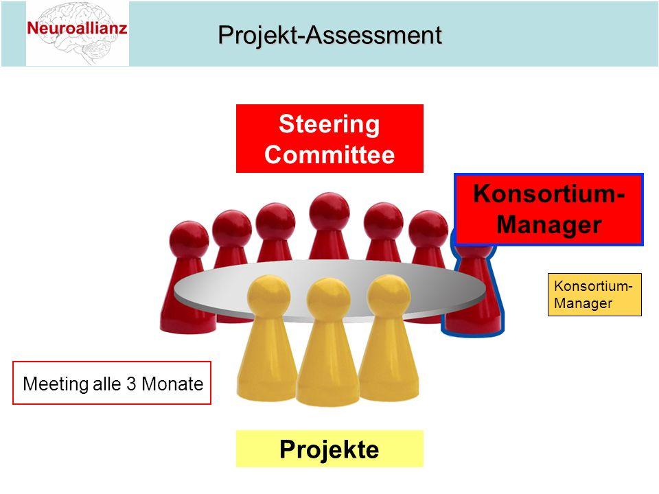 Steering Committee Konsortium-Manager Projekte