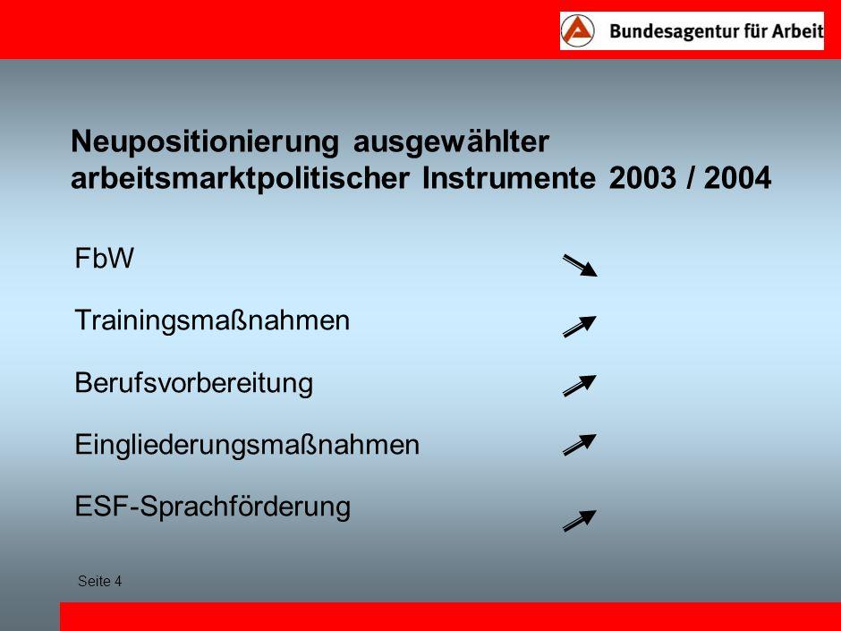 Neupositionierung ausgewählter arbeitsmarktpolitischer Instrumente 2003 / 2004