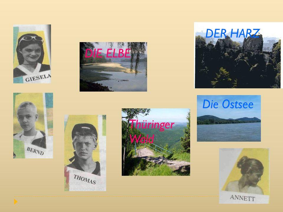 DER HARZ DIE ELBE Die Ostsee Thüringer Wald