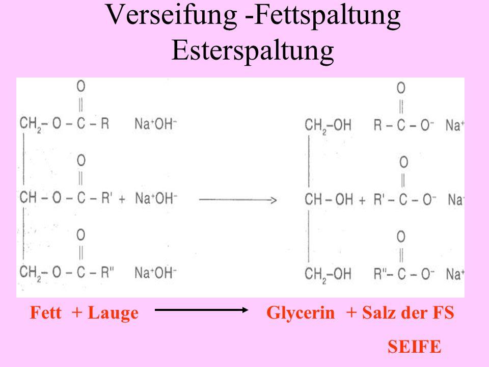 Verseifung -Fettspaltung Esterspaltung