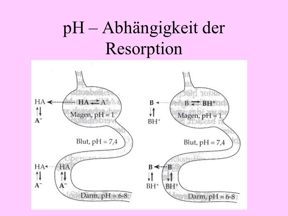 pH – Abhängigkeit der Resorption