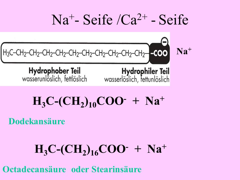 Na+- Seife /Ca2+ - Seife H3C-(CH2)10COO- + Na+ H3C-(CH2)16COO- + Na+
