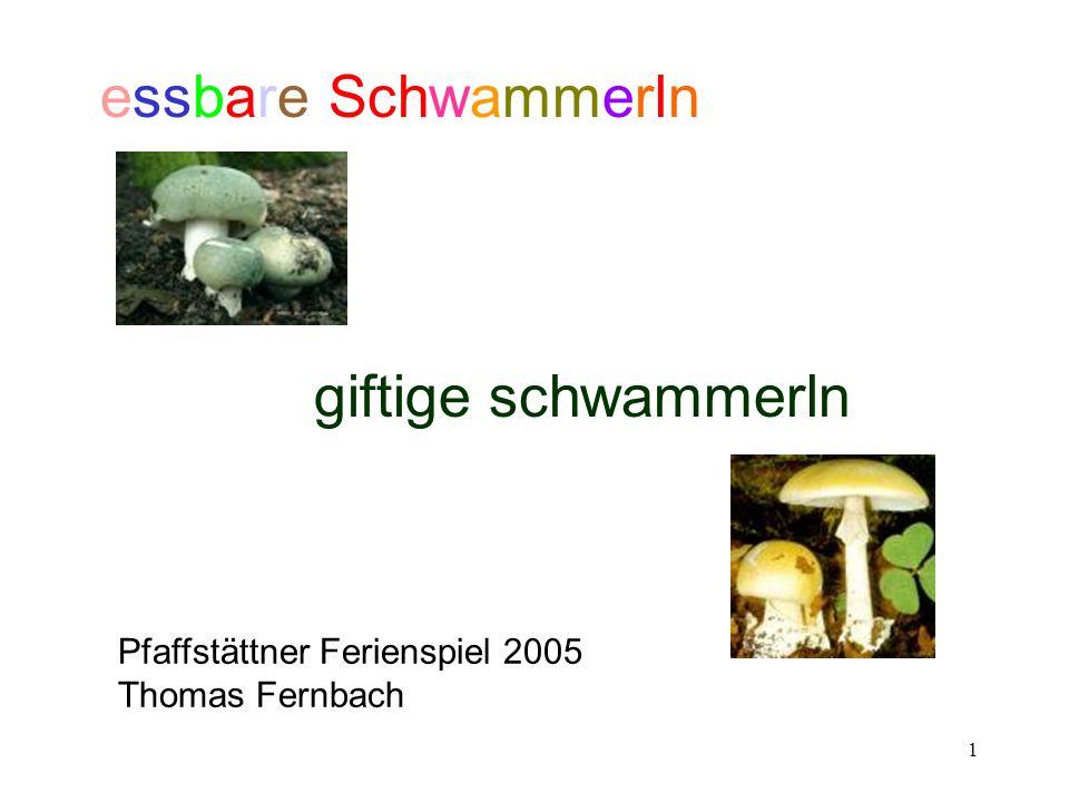 essbare Schwammerln giftige schwammerln Pfaffstättner Ferienspiel 2005
