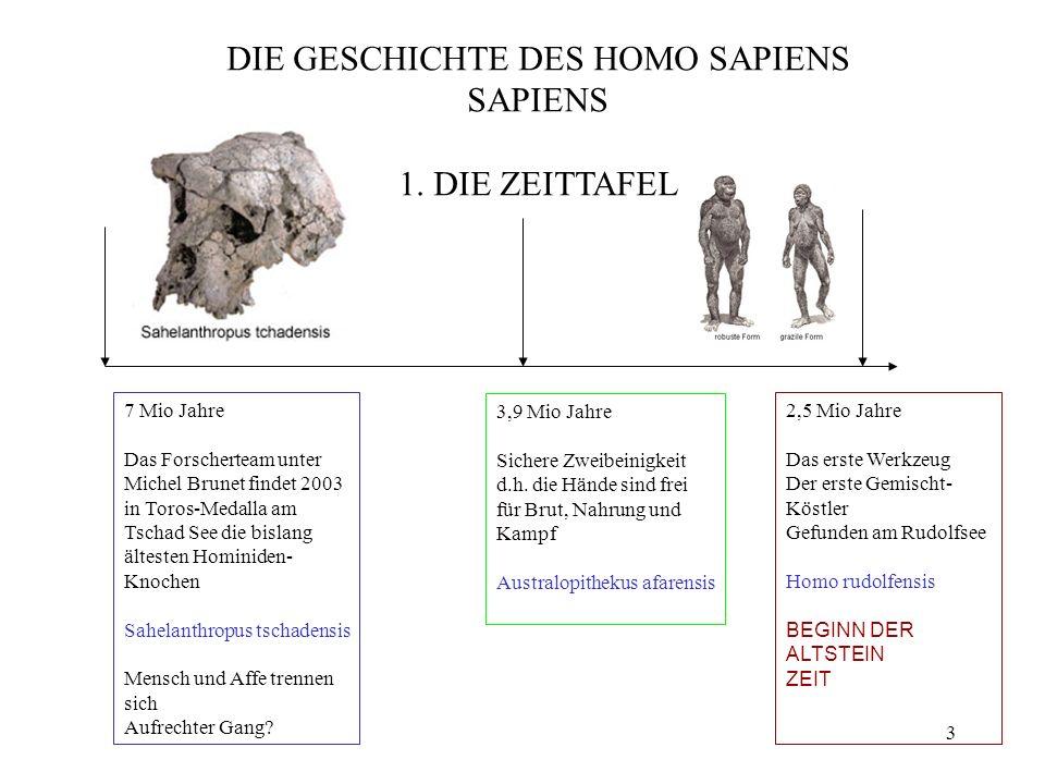 DIE GESCHICHTE DES HOMO SAPIENS