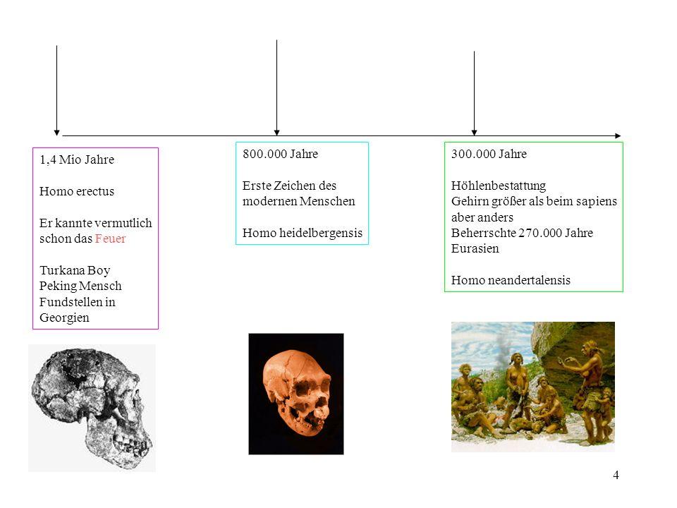 800.000 Jahre Erste Zeichen des. modernen Menschen. Homo heidelbergensis. 300.000 Jahre. Höhlenbestattung.