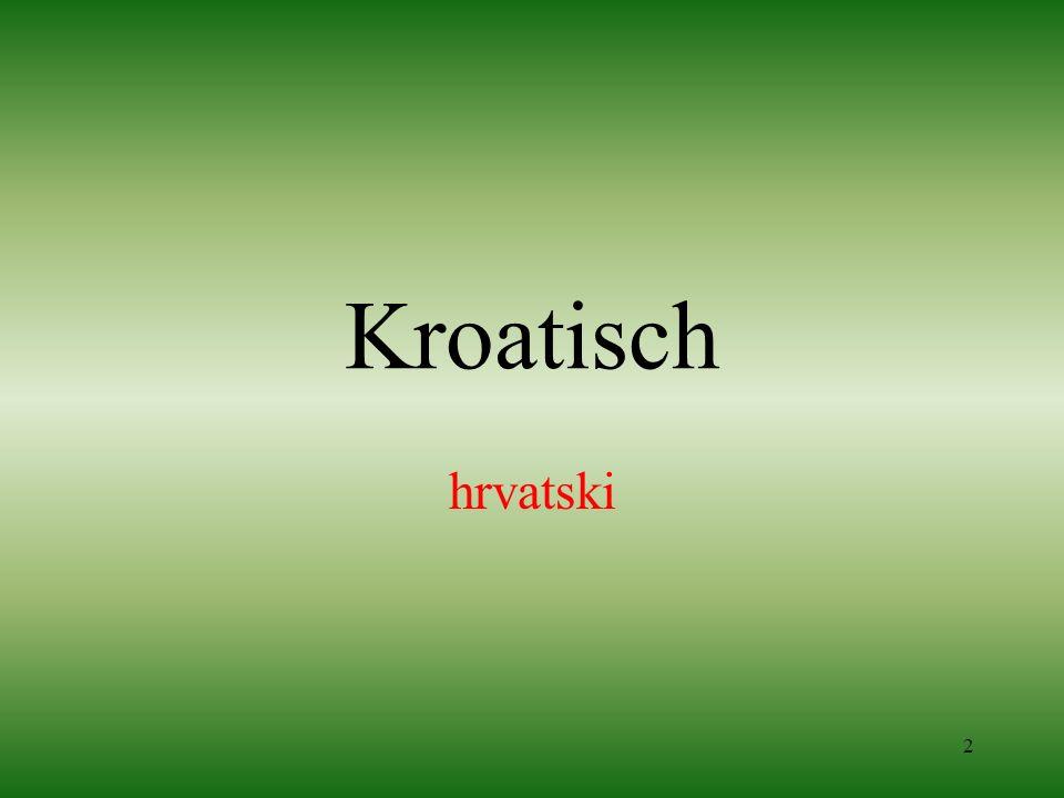 Kroatisch hrvatski