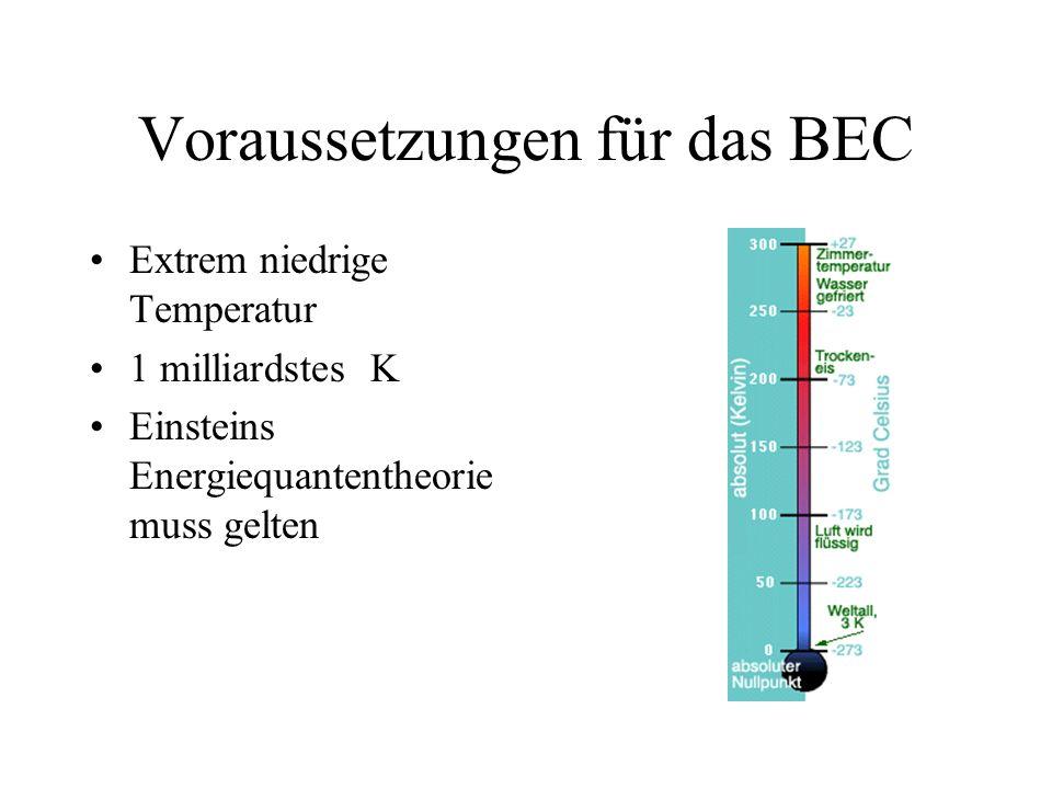 Voraussetzungen für das BEC