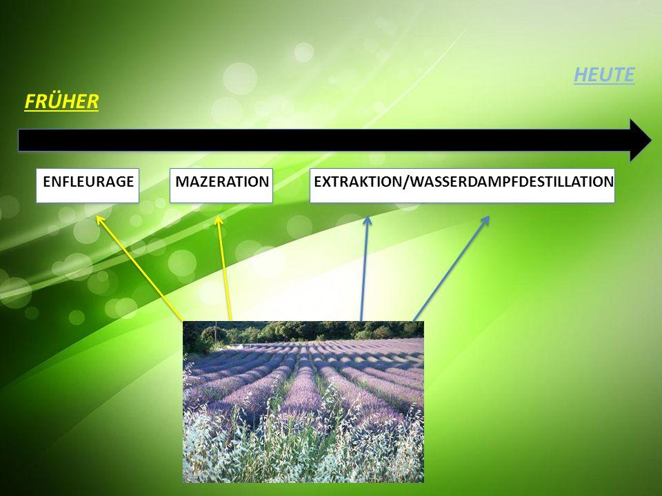 HEUTE FRÜHER ENFLEURAGE MAZERATION EXTRAKTION/WASSERDAMPFDESTILLATION