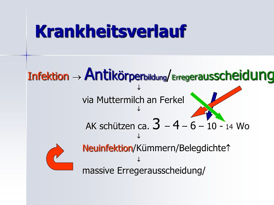 Krankheitsverlauf Infektion  Antikörperbildung/Erregerausscheidung