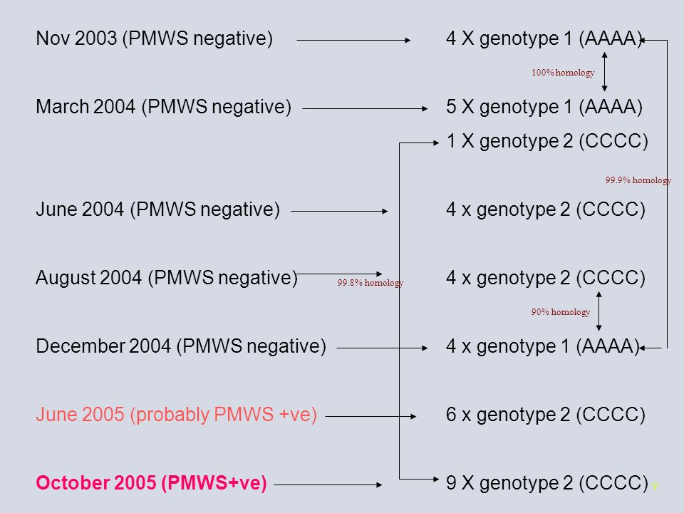 Nov 2003 (PMWS negative) 4 X genotype 1 (AAAA)