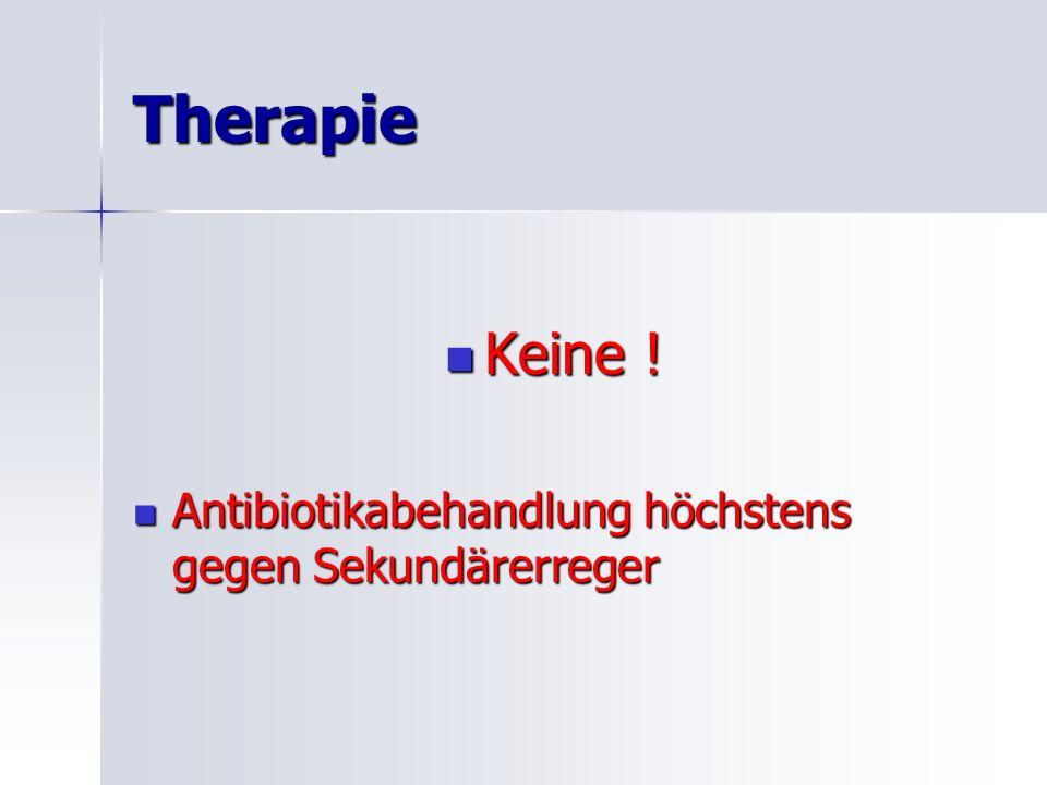 Therapie Keine ! Antibiotikabehandlung höchstens gegen Sekundärerreger