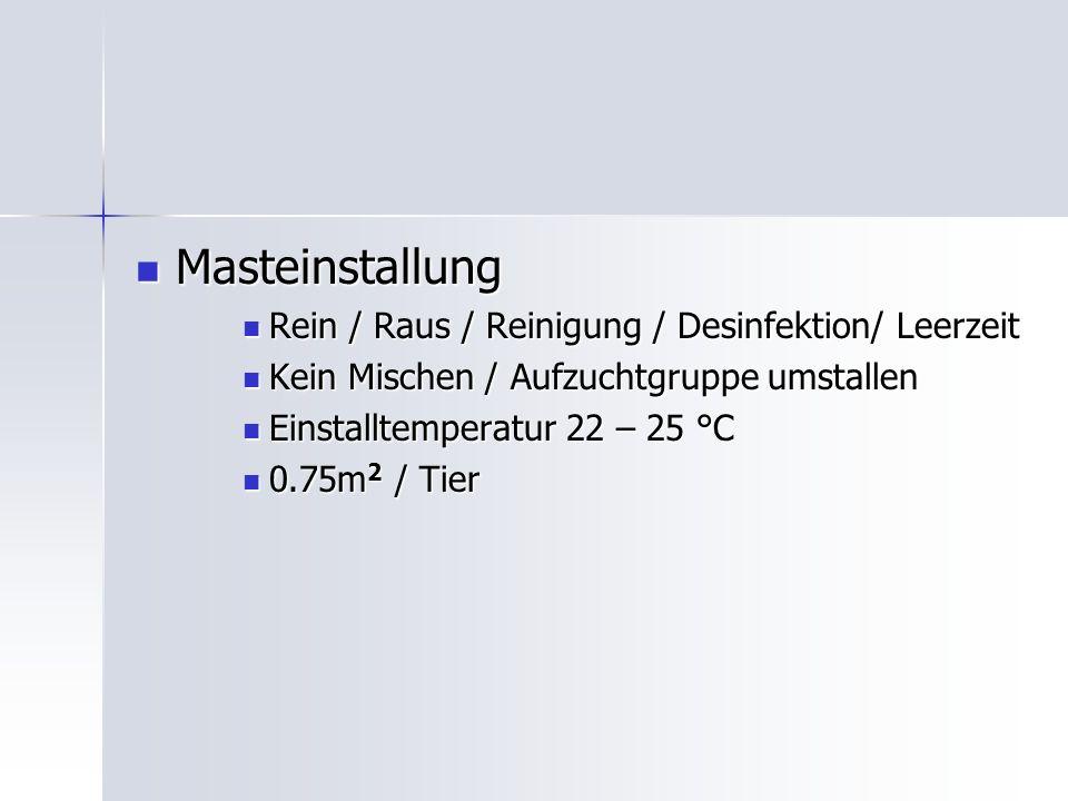 Masteinstallung Rein / Raus / Reinigung / Desinfektion/ Leerzeit