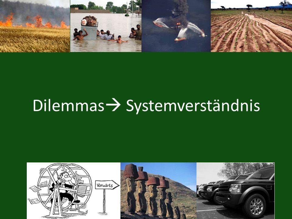Dilemmas Systemverständnis