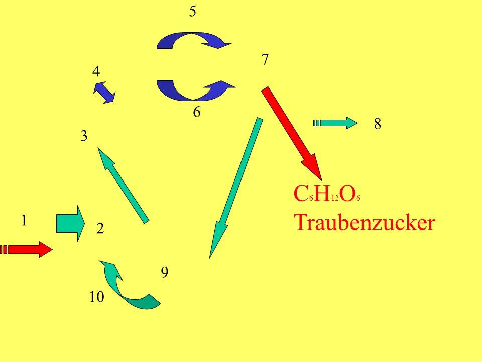 5 7 4 6 8 3 C6H12O6 Traubenzucker 1 2 9 10