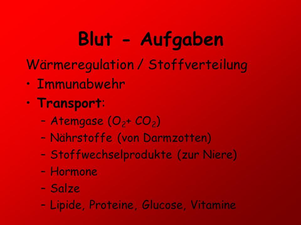 Blut - Aufgaben Wärmeregulation / Stoffverteilung Immunabwehr
