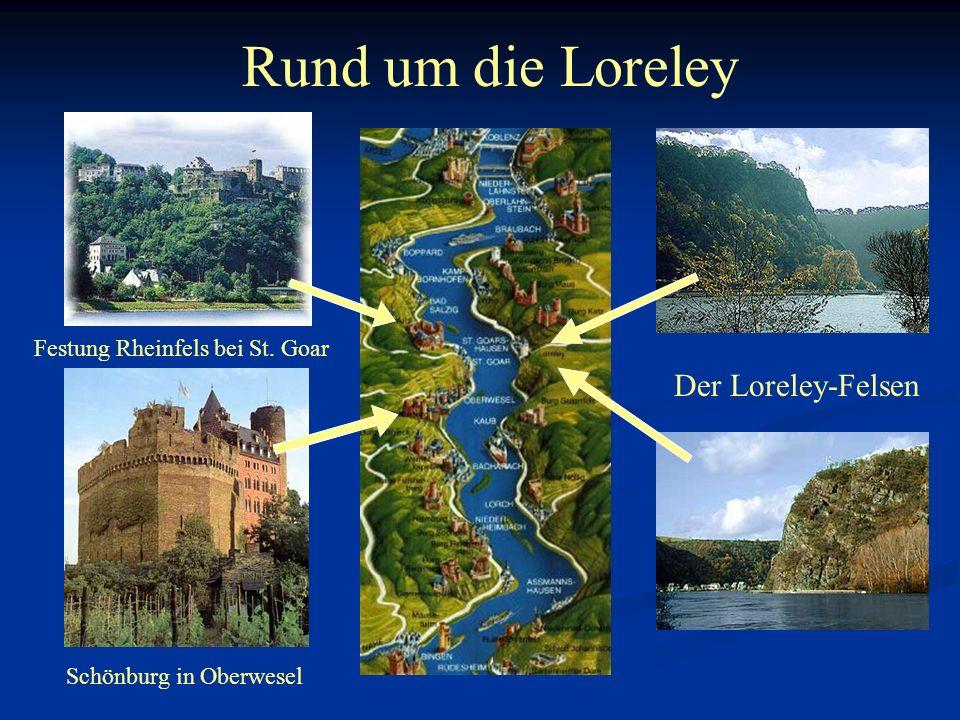 Rund um die Loreley Der Loreley-Felsen Festung Rheinfels bei St. Goar