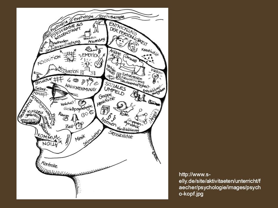 http://www.s-elly.de/site/aktivitaeten/unterricht/faecher/psychologie/images/psycho-kopf.jpg