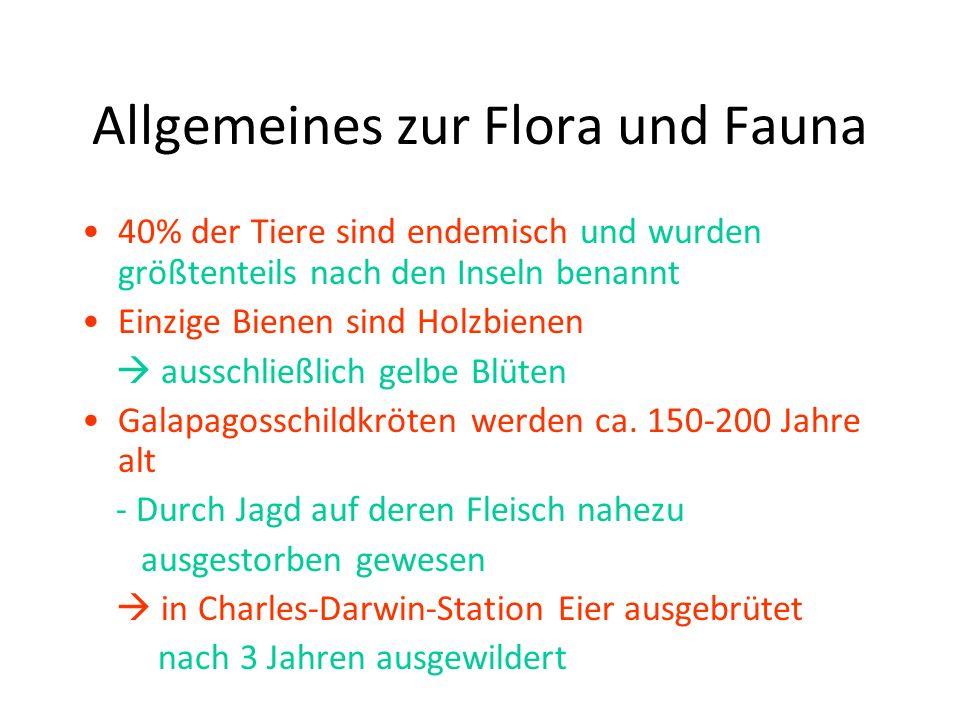 Allgemeines zur Flora und Fauna