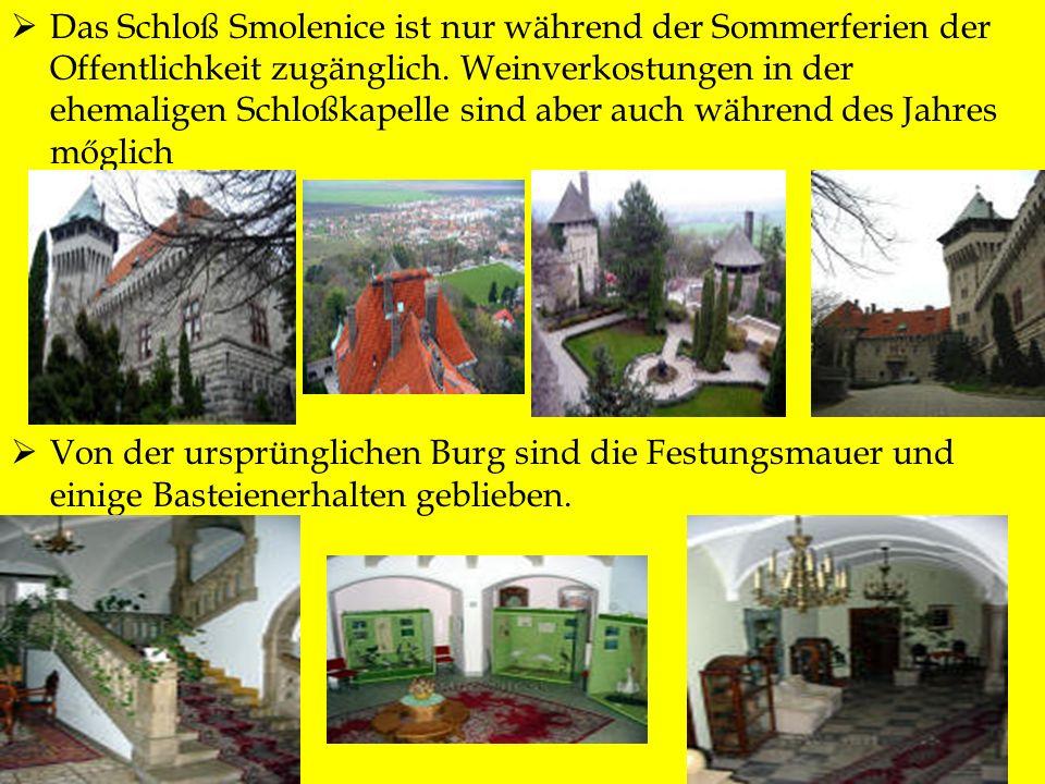 Das Schloß Smolenice ist nur während der Sommerferien der Offentlichkeit zugänglich. Weinverkostungen in der ehemaligen Schloßkapelle sind aber auch während des Jahres mőglich