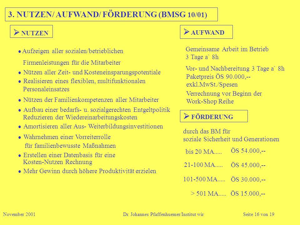 3. NUTZEN/ AUFWAND/ FÖRDERUNG (BMSG 10/01)