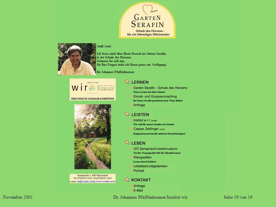 November 2001 Dr. Johannes Pfaffenhuemer/Institut wir Seite 19 von 19