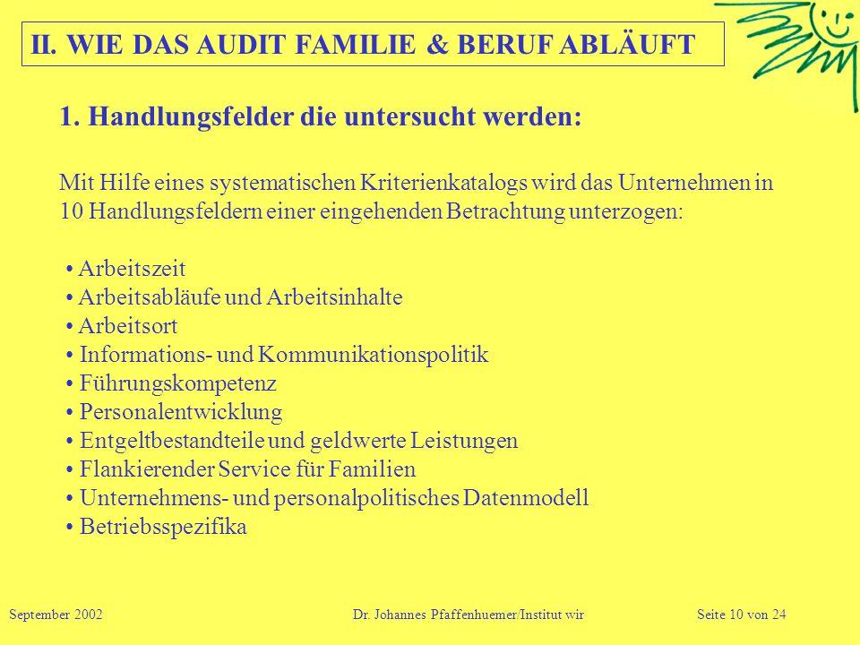 II. WIE DAS AUDIT FAMILIE & BERUF ABLÄUFT