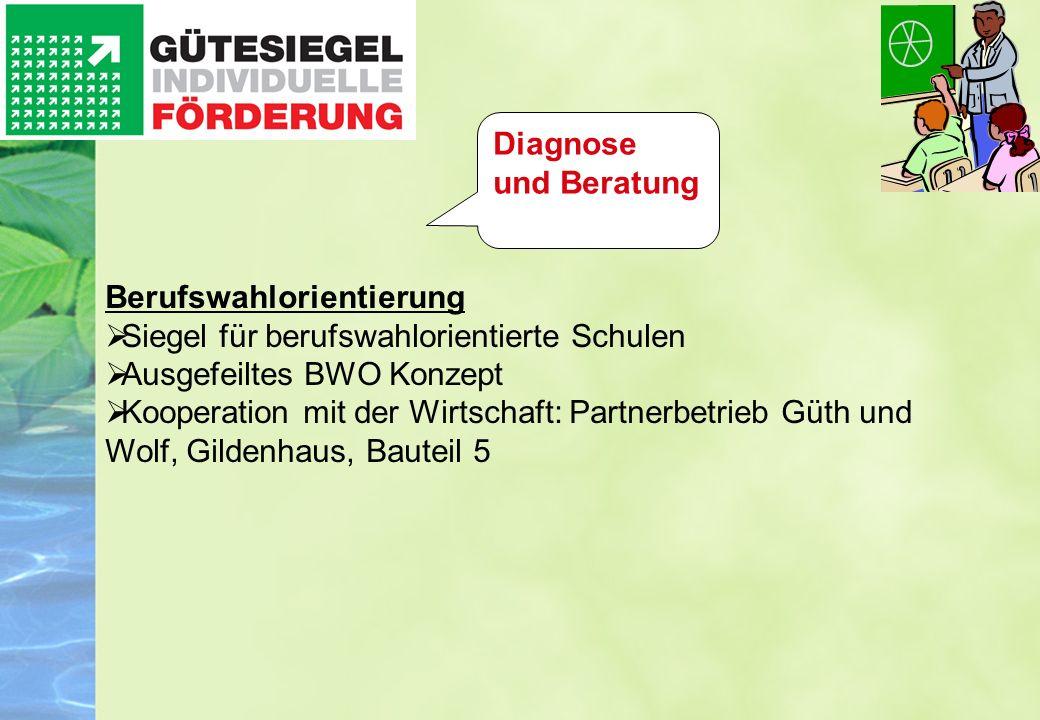Diagnose und Beratung Berufswahlorientierung. Siegel für berufswahlorientierte Schulen. Ausgefeiltes BWO Konzept.