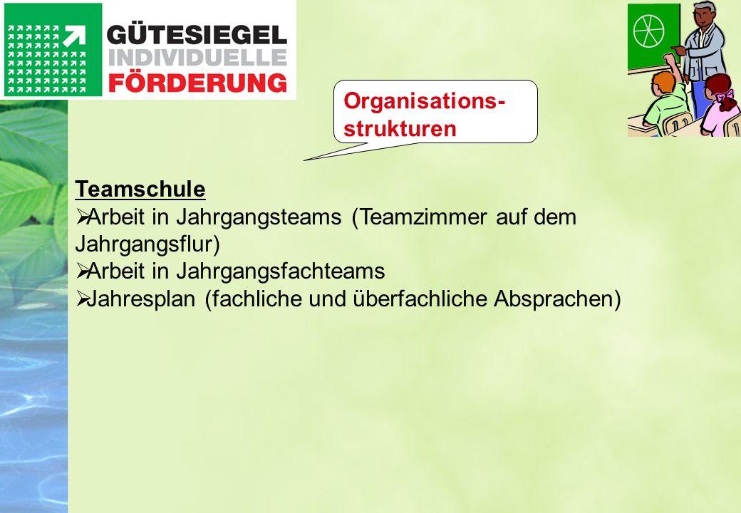 Organisations-strukturen
