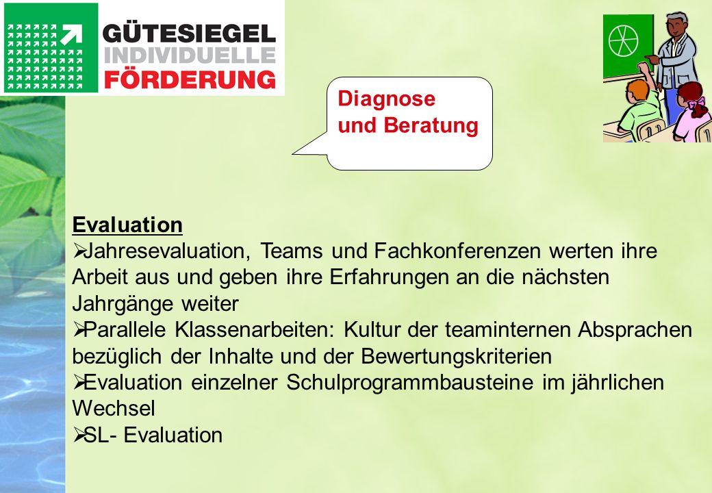 Diagnose und Beratung Evaluation.