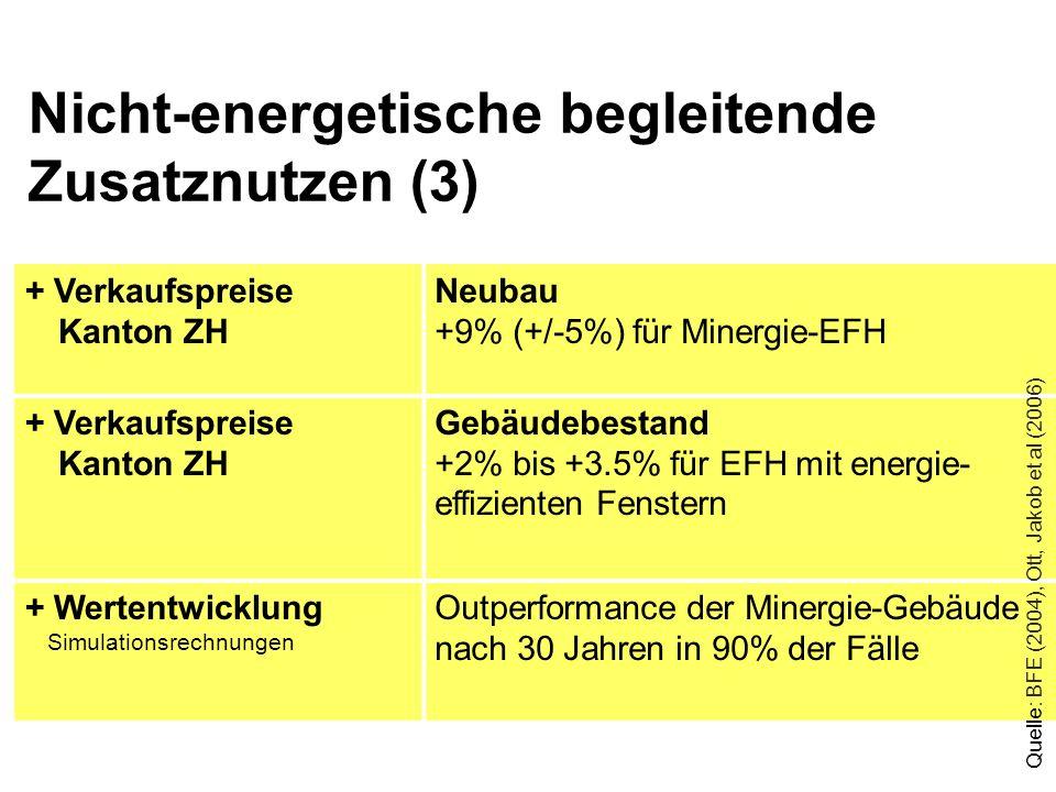Nicht-energetische begleitende Zusatznutzen (3)