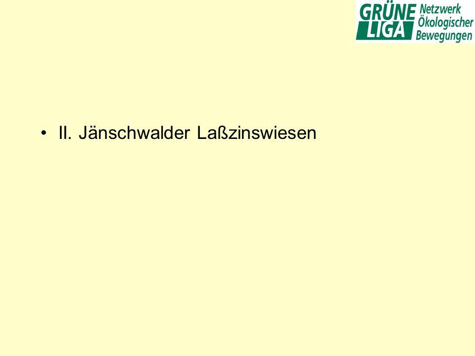 II. Jänschwalder Laßzinswiesen