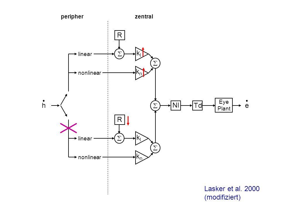 Lasker et al. 2000 (modifiziert)