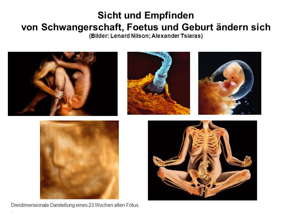 Sicht und Empfinden von Schwangerschaft, Foetus und Geburt ändern sich (Bilder: Lenard Nilson; Alexander Tsiaras)