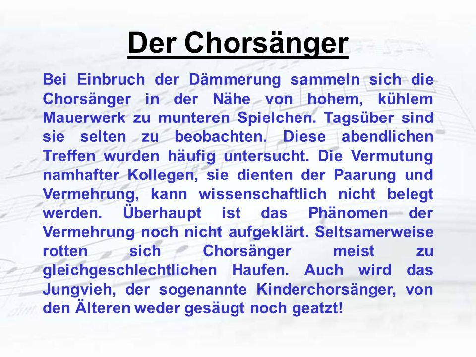 Der Chorsänger